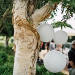 Paper Lanterns for hire